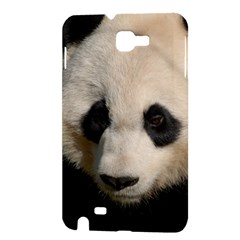 Adorable Panda Samsung Galaxy Note 1 Hardshell Case