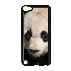 Adorable Panda Apple iPod Touch 5 Case (Black)