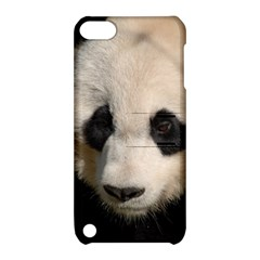 Adorable Panda Apple iPod Touch 5 Hardshell Case with Stand