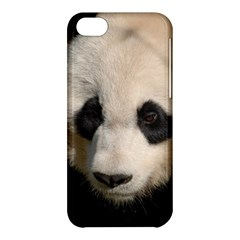Adorable Panda Apple iPhone 5C Hardshell Case