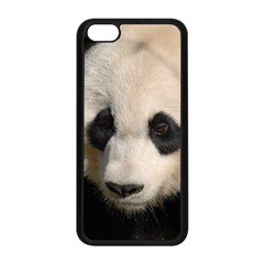 Adorable Panda Apple Iphone 5c Seamless Case (black)