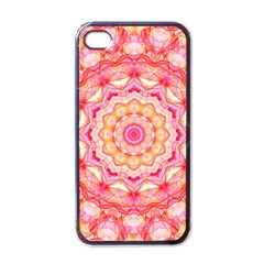 Yellow Pink Romance Apple iPhone 4 Case (Black)