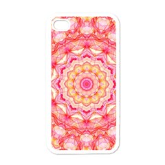 Yellow Pink Romance Apple Iphone 4 Case (white)