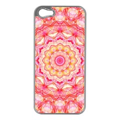 Yellow Pink Romance Apple Iphone 5 Case (silver)