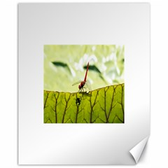 Dragonfly Canvas 11  x 14  (Unframed)