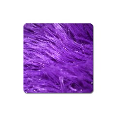 Purple Tresses Magnet (Square)