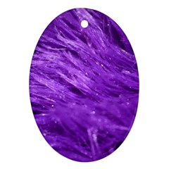 Purple Tresses Oval Ornament (two Sides)