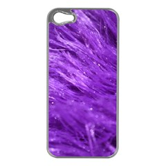 Purple Tresses Apple iPhone 5 Case (Silver)