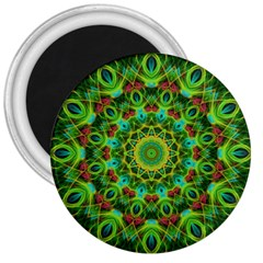 Peacock Feathers Mandala 3  Button Magnet