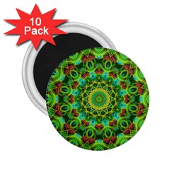 Peacock Feathers Mandala 2 25  Button Magnet (10 Pack)