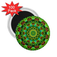 Peacock Feathers Mandala 2.25  Button Magnet (100 pack)