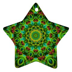 Peacock Feathers Mandala Star Ornament (two Sides)