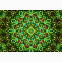 Peacock Feathers Mandala Canvas 20  X 30  (unframed)