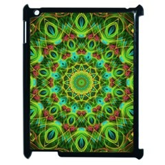 Peacock Feathers Mandala Apple iPad 2 Case (Black)