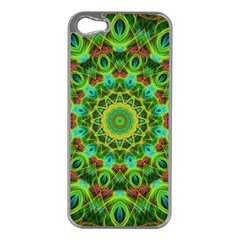 Peacock Feathers Mandala Apple iPhone 5 Case (Silver)