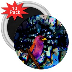 Bird 3  Button Magnet (10 Pack)