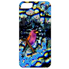 Bird Apple Iphone 5 Classic Hardshell Case