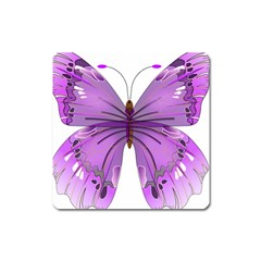 Purple Awareness Butterfly Magnet (Square)