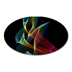 Peacock Symphony, Abstract Rainbow Music Magnet (Oval)