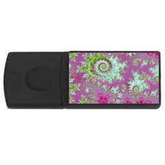 Raspberry Lime Surprise, Abstract Sea Garden  1GB USB Flash Drive (Rectangle)