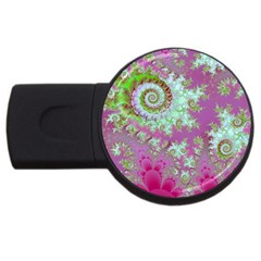 Raspberry Lime Surprise, Abstract Sea Garden  4gb Usb Flash Drive (round)