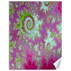 Raspberry Lime Surprise, Abstract Sea Garden  Canvas 18  X 24  (unframed)