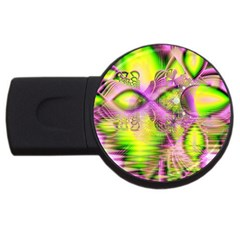 Raspberry Lime Mystical Magical Lake, Abstract  4GB USB Flash Drive (Round)
