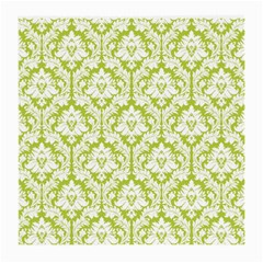 White On Spring Green Damask Glasses Cloth (Medium, Two Sided)