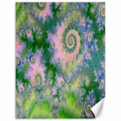 Rose Apple Green Dreams, Abstract Water Garden Canvas 18  X 24  (unframed)