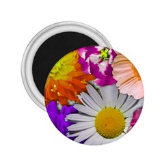 Lovely Flowers,purple 2.25  Button Magnet