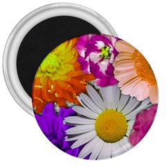 Lovely Flowers,purple 3  Button Magnet