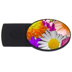 Lovely Flowers,purple 2gb Usb Flash Drive (oval)
