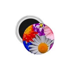 Lovely Flowers, Blue 1.75  Button Magnet