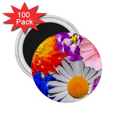 Lovely Flowers, Blue 2.25  Button Magnet (100 pack)