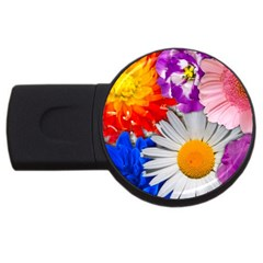 Lovely Flowers, Blue 2gb Usb Flash Drive (round)