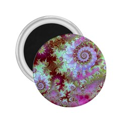 Raspberry Lime Delight, Abstract Ferris Wheel 2.25  Magnet