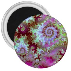 Raspberry Lime Delight, Abstract Ferris Wheel 3  Magnet