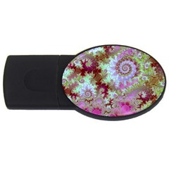 Raspberry Lime Delight, Abstract Ferris Wheel USB Flash Drive Oval (1 GB)