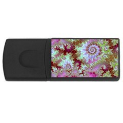 Raspberry Lime Delight, Abstract Ferris Wheel USB Flash Drive Rectangular (2 GB)