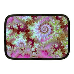 Raspberry Lime Delight, Abstract Ferris Wheel Netbook Case (medium)