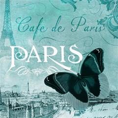Paris Butterfly Canvas 20  x 20  (Unframed)