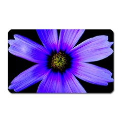 Purple Bloom Magnet (Rectangular)
