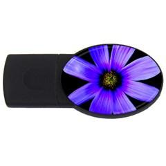 Purple Bloom 2GB USB Flash Drive (Oval)