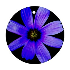 Purple Bloom Round Ornament (two Sides)