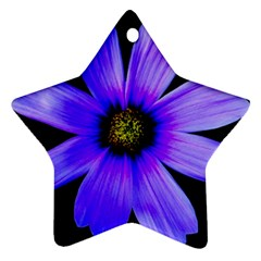 Purple Bloom Star Ornament (Two Sides)