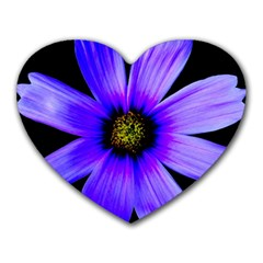 Purple Bloom Mouse Pad (Heart)