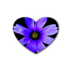 Purple Bloom Drink Coasters 4 Pack (Heart)