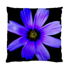 Purple Bloom Cushion Case (Two Sided)