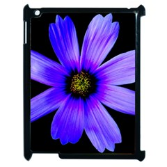 Purple Bloom Apple iPad 2 Case (Black)