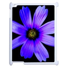 Purple Bloom Apple iPad 2 Case (White)